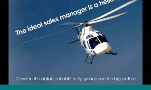 Webinar the ideal sales manager