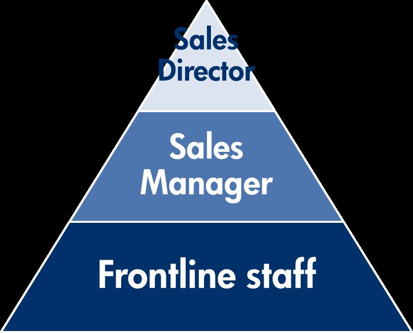 sales team model